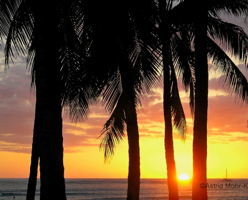 02 Hawaii 2 Waikiki