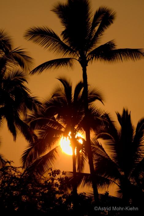 02 Hawaii 2 Kona