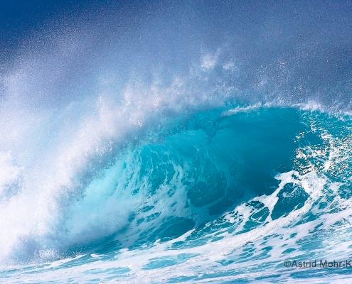 02 Hawaii 2 Tube