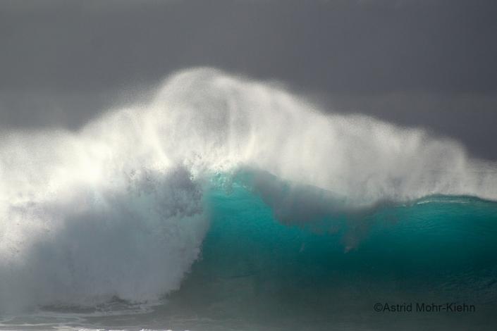 02 Hawaii 2 Wave #1